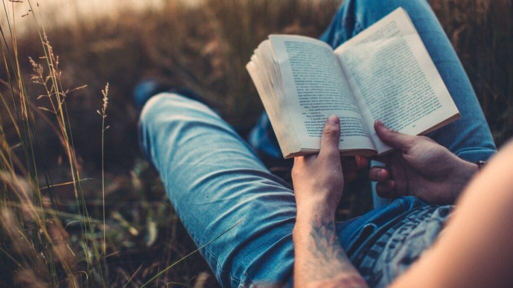 elementos y clasificación de la novela